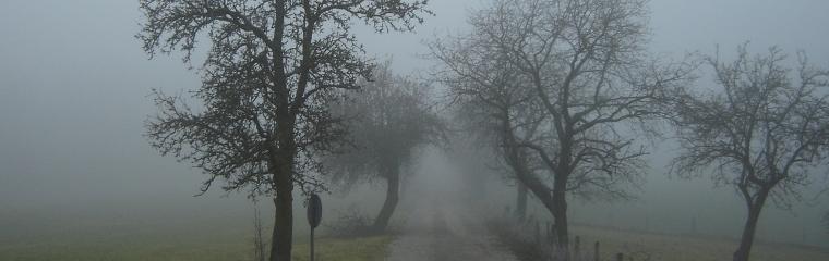 insoddisfazione nebbia