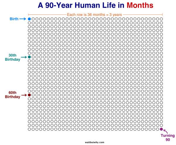 La tua vita in mesi